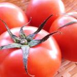 トマトのヘタが白い!これってカビ!?見分け方や保存方法について