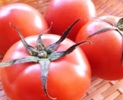 カビ トマト 白