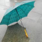 傘のカビの発生原因や上手な落とし方を伝授!