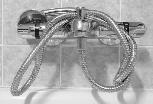 カビ シャワーヘッド 掃除 予防